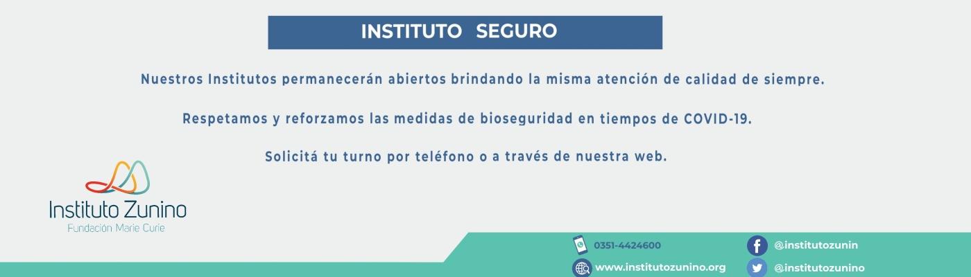 Instituto Seguro